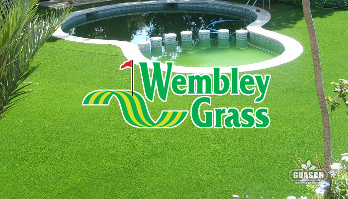 Guaschsemillas cesped cesped mixs wembley grass mix - Semillas de cesped ...