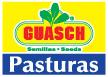 División Guasch Pasturas
